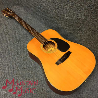 Trump TS10W Acoustic Guitar for sale