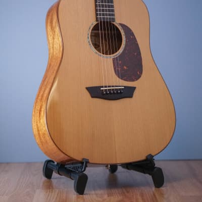 Pre-Owned Washburn WD160SW Natural for sale
