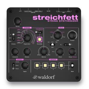 Waldorf Streichfett String Synthesizer Desktop Module