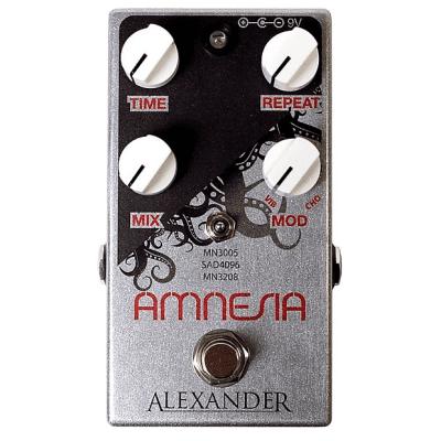 Alexander Pedals Amnesia Vintage Delay