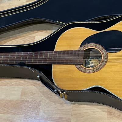 Vintage Conqueror  Acoustic Guitar for sale