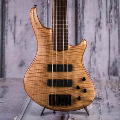 Roscoe SKB Custom Series 5-String Bass, Natural for sale