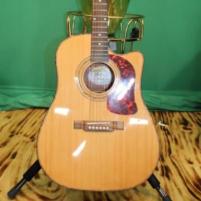 Washburn Acoustic-Electric Guitar DK20CET for sale