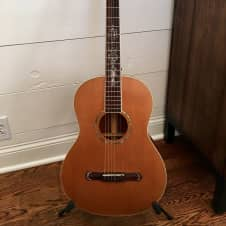 CORT EARTH- 900 Parlor Style Acoustic/ Electric !! Great Used Condition !!
