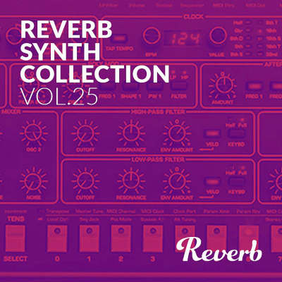 Reverb Sequential Circuits Prophet-6 Synth Collection Sample Pack by Rik Marston