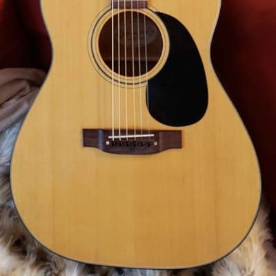 Conn F-11 Grand Concert Acoustic Guitar 1978 Japan for sale