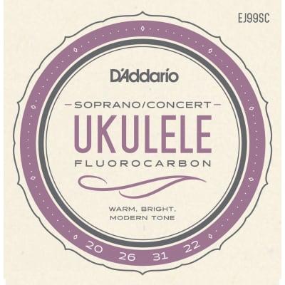 D'Addario EJ99SC FluoroCarbon Ukulele Soprano/Concert