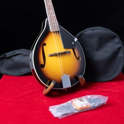 Appalachian APM-1 A-Model Mandolin Kit for sale