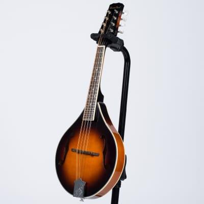 BeaverCreek BCMM201 Mandolin for sale