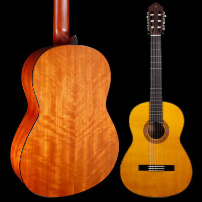 Yamaha CG142SH Classical Guitar Spruce Top Lower Action for sale