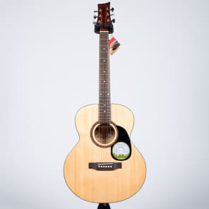 Beaver Creek BCTF101 Folk Acoustic Guitar BCTF 101 for sale
