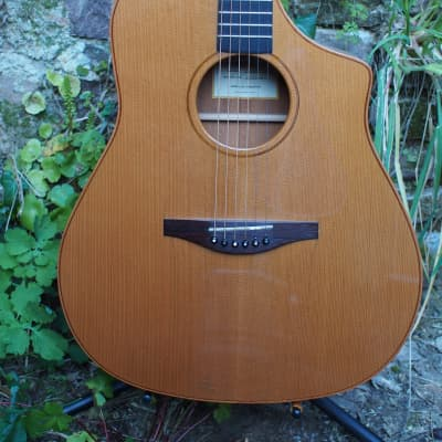 Avalon D101CE Gold Series played by Eric Roche atthe 2003 NAMM Show for sale