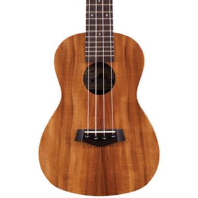 Islander AC-4 Acacia Concert Ukulele for sale