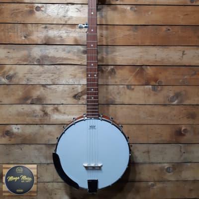 Epiphone MB-100 5 string banjo for sale