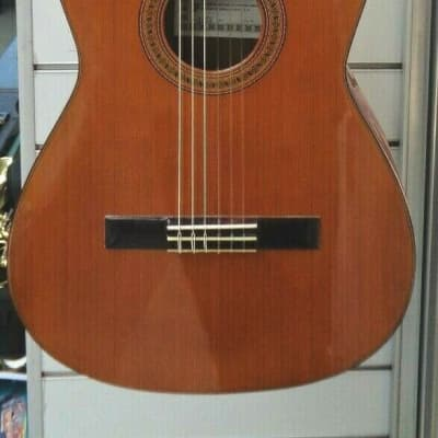 Esteve Granados 3ECE Electric Acoustic Guitar for sale