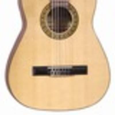 J Reynolds 36 Guitar w/ Bag for sale