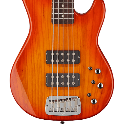 G&L Tribute Series L-2500 5-String Bass with Brazilian Cherry Fretboard 2010s Honeyburst for sale