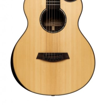 Islander MS-MG-EQ Electro-Acoustic Mini-guitar w/ Solid Sitka Spruce Top, Mahogany B&S, Gig Bag for sale