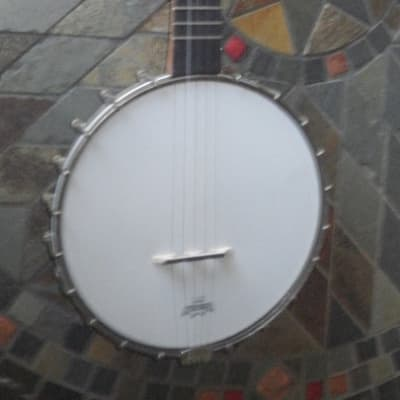Lyon and Healy 5 String/NEW PRICE for sale