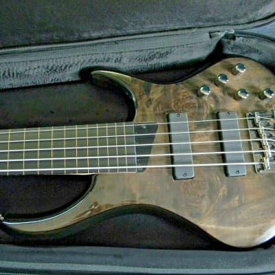 2021 MTD Kingston ZX5 (ZX-5) Fretless 5 String Bass  Trans Black Bartolini Brand New W/ MTD Gig Bag