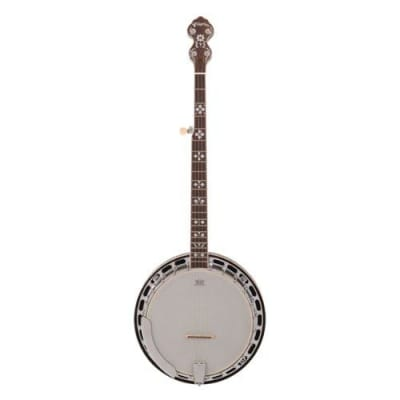 Pilgrim Rocky Mountain Closed Back Banjo - VPB045 for sale