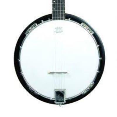Trinity River PRB75 Drifter 3/4 Size Banjo for sale
