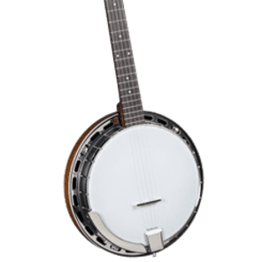 Rover RB-25 Resonator 5 String Banjo for sale