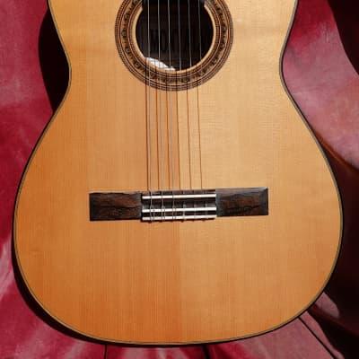 Montalvo Hauser Master Model Flamenco Guitar 2006 for sale
