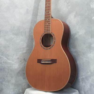 Aria AP-STD Parlour Acoustic for sale