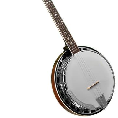 Gold Tone BG-250F 5 String Resonator Banjo