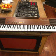 Roland PianoPlus 70 1970s Everything Works