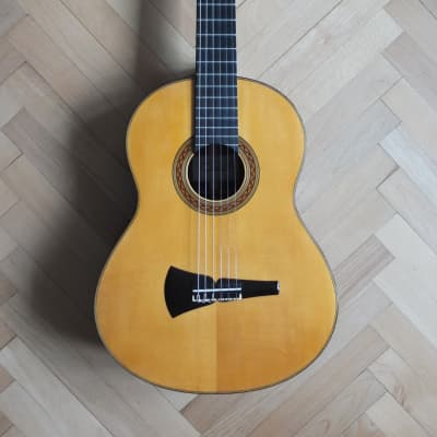 Concert Classical Guitar 1991 (audio sample) for sale
