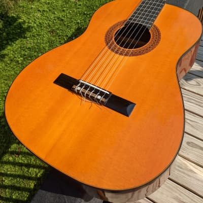 Hondo II H310A Classical Acoustic Guitar for sale