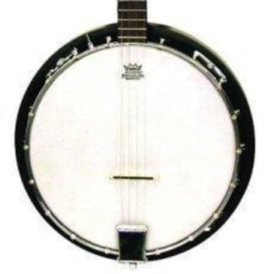 Trinity River TRTB1 Tenor Banjo for sale