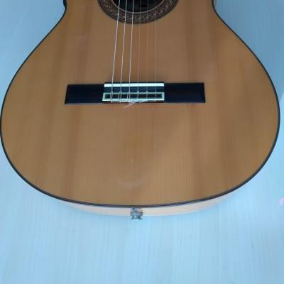 Antonio Aparicio Flamenco Guitar AA-500e  Spruce for sale