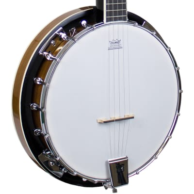 Freshman 5-String Resonator Banjo for sale