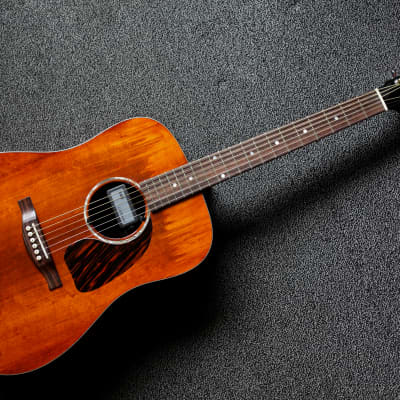 Eastman Pacific Coast with De Armond pickup for sale