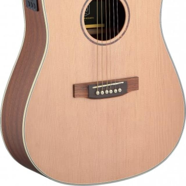 James Neligan Asyla Series Dreadnought Acoustic-Electric Guitar w/ Solid Spruce Top image
