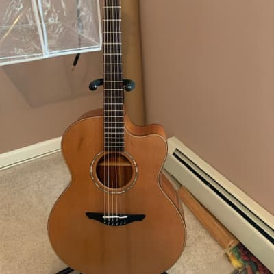 Avalon A110C 2014 Cedar top, Mahogany back and sides for sale