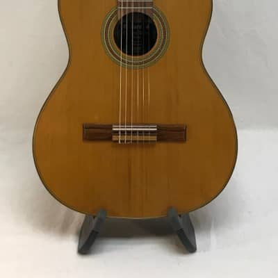 Giannini GWNC1 Sevilha Classical Guitar with Gig Bag Made in Brazil for sale