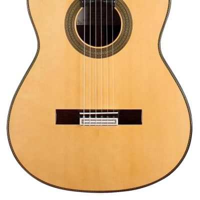 Teodoro Perez Concierto 2019 Classical Guitar Spruce/Indian Rosewood for sale