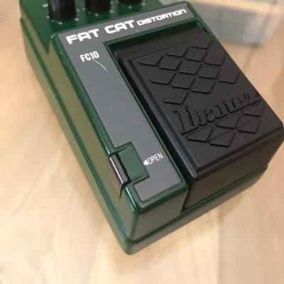 Ibanez Fat Cat  FC-10  (MIJ)