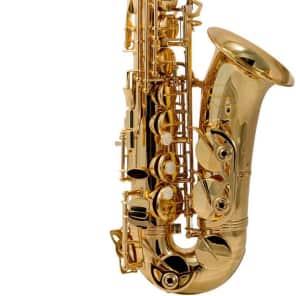 Allora AAS-250 Student Alto Saxophone