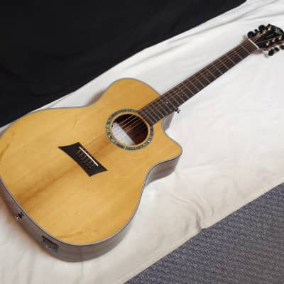 MICHAEL KELLY 3D Grand Auditorium cutaway ACOUSTIC electric GUITAR new - B for sale