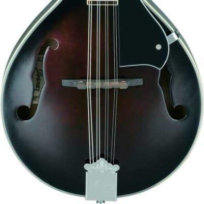 Ibanez M510DVS FM A-Style Mandolin Dark Violin Sunburst for sale