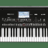 Korg PA300 Professional Arranger Keyboard (PA-300)