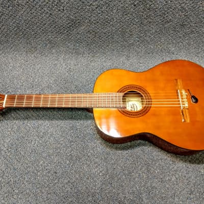 Hondo H-310 Acoustic-Electric Classical Guitar With DeArmond Pickup for sale