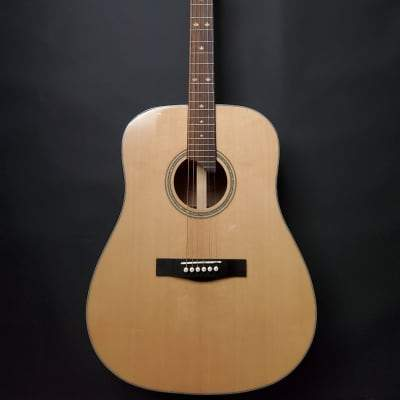 Riversong P 550-D Acoustic Guitar for sale