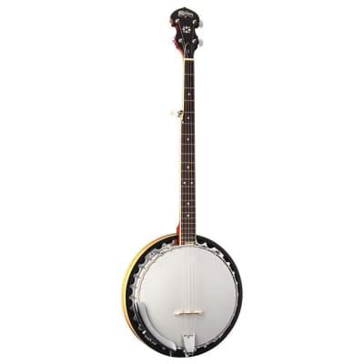 Washburn B9 5-String Resonator Banjo Mahogany for sale