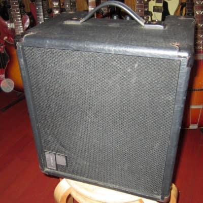 Vintage Circa ~1981 Polytone Mini Brute II Black for sale